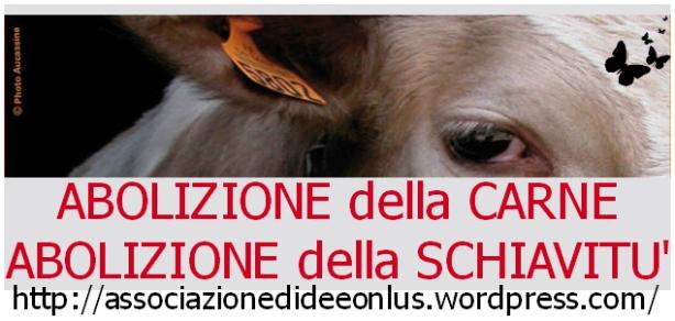 Abolizione della Carne, Abolizione della Schiavitù, Grosseto 24 maggio 2014