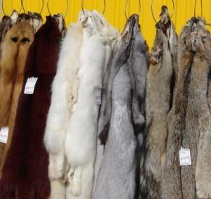 pellicce grezze mercato