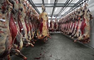 industrial-slaughterhouse