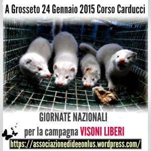 BREAK THE CAGES adi 24 Gennaio 2015