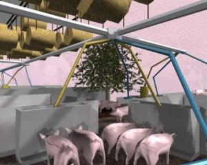 """Una immagine di rendering dal progetto """"Pig City"""""""