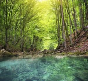 corsi d'acqua