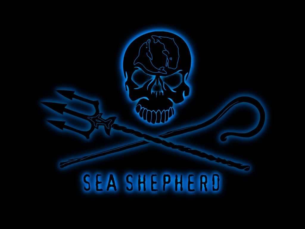 Lo spettacolo assicurato di Sea Shepherd e l'apatica accettazione dei macelli nostrani